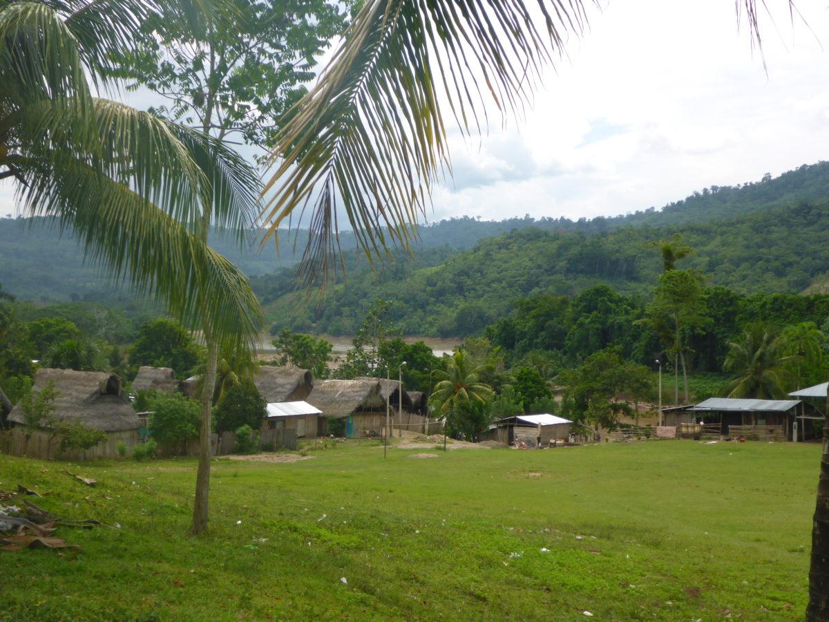 Ein Hu geht durch das Dorf