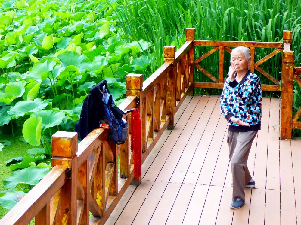 Jadegrüner Seepark